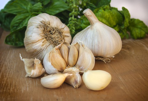Garlic – Music LOCAL Jardins La Defriche (4oz Bag/Approx 3-4)