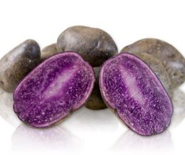 Organic Blue Potatoes