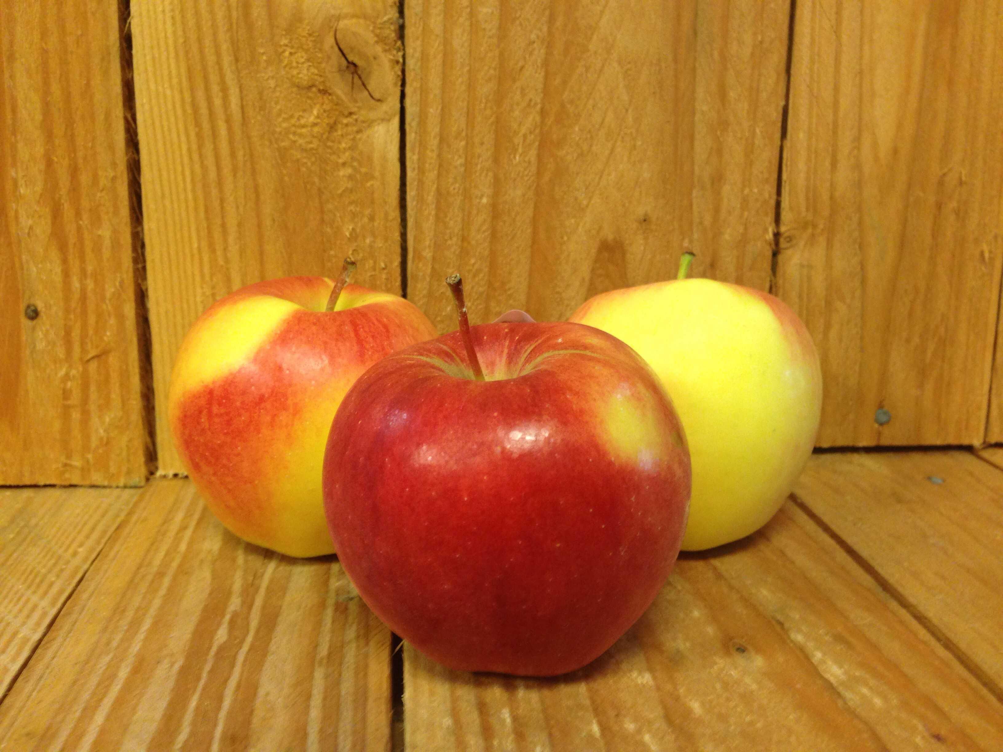 Apples – Ambrosia BC (Bag of 5)