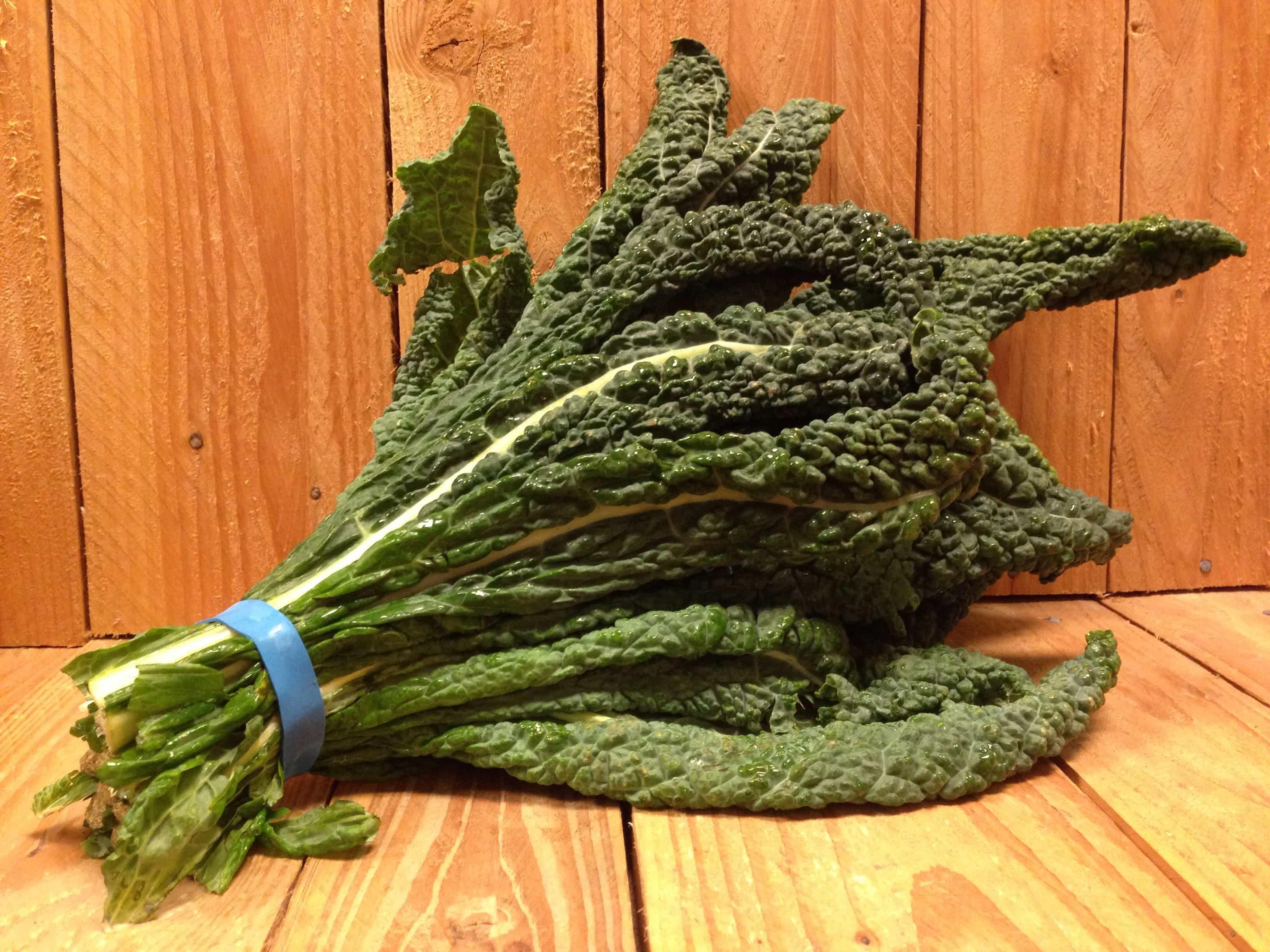 Kale – Black Lacinato Dinosaur LOCAL (Bunch)