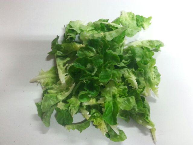 Lettuce – Spring Mix LOCAL (4oz Bag)