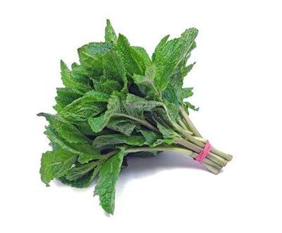 Organic Mint Bunch