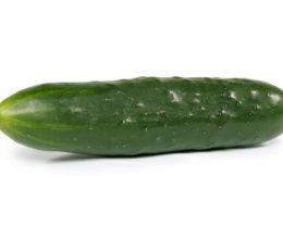 Cucumber - Field