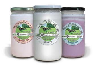 Hope Eco Farms – Water Buffalo Kefir Blueberry  NON-CERTIFIED (700g Glass Jar)