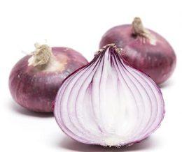onions-red-italian-flat