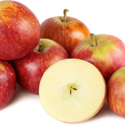apples-fuji