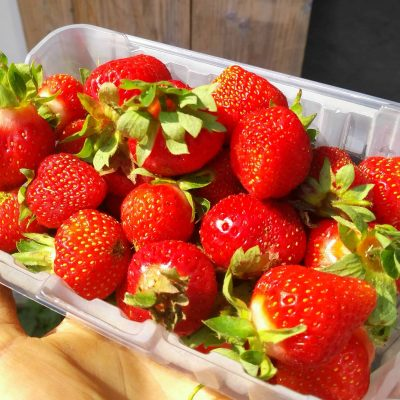 f-strawberries-local-litre