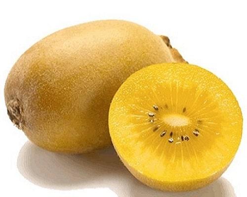Kiwi – Yellow Sun Gold NEW ZEALAND (Per LB)