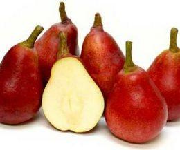 f-pears-anjou-red