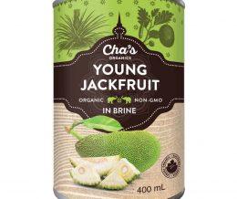 Young_Jackfruit_6727107b-d4f6-442f-844d-996b851fc304