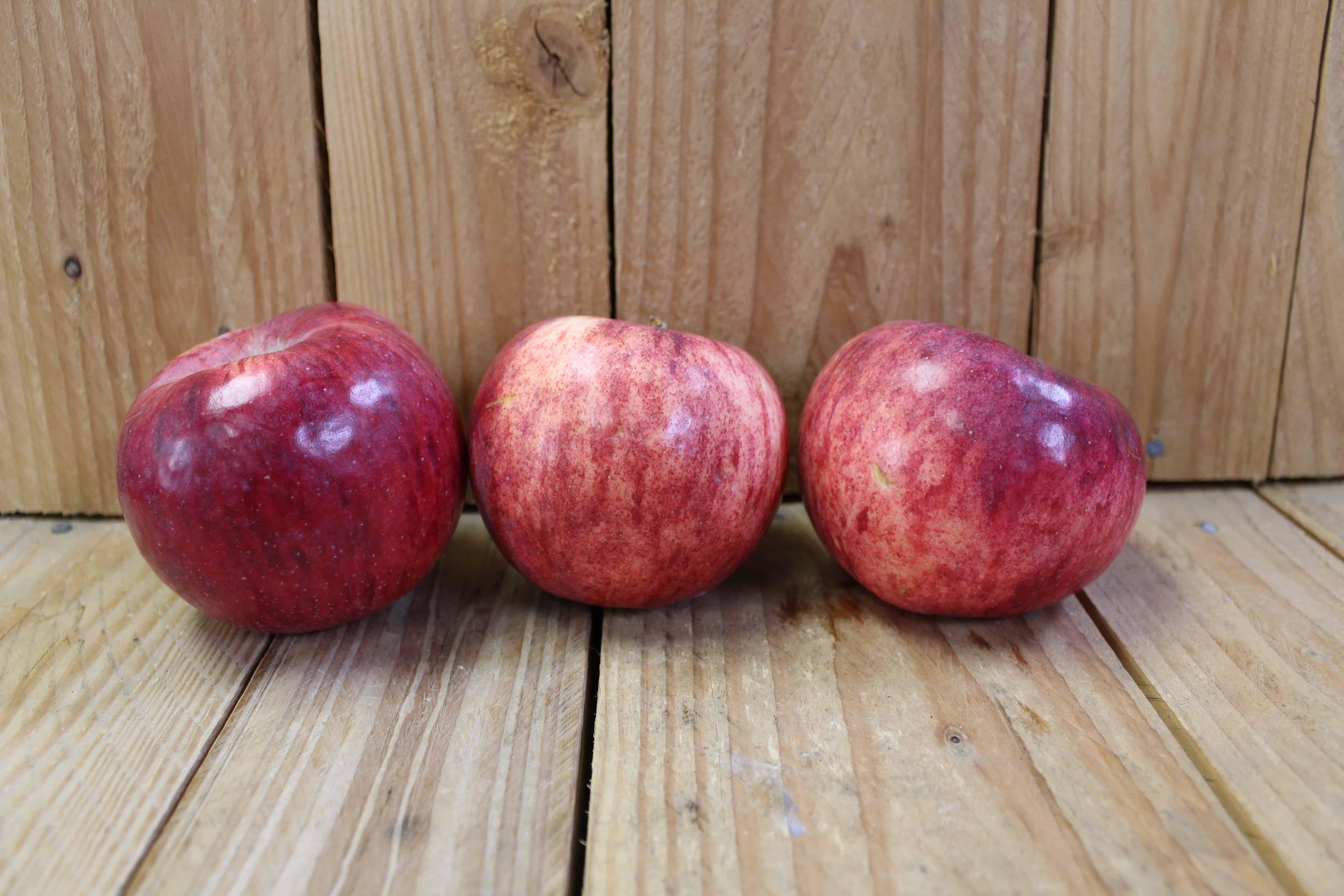 Apples – Cortland LOCAL Vergers Pomibec (2LB Bag)