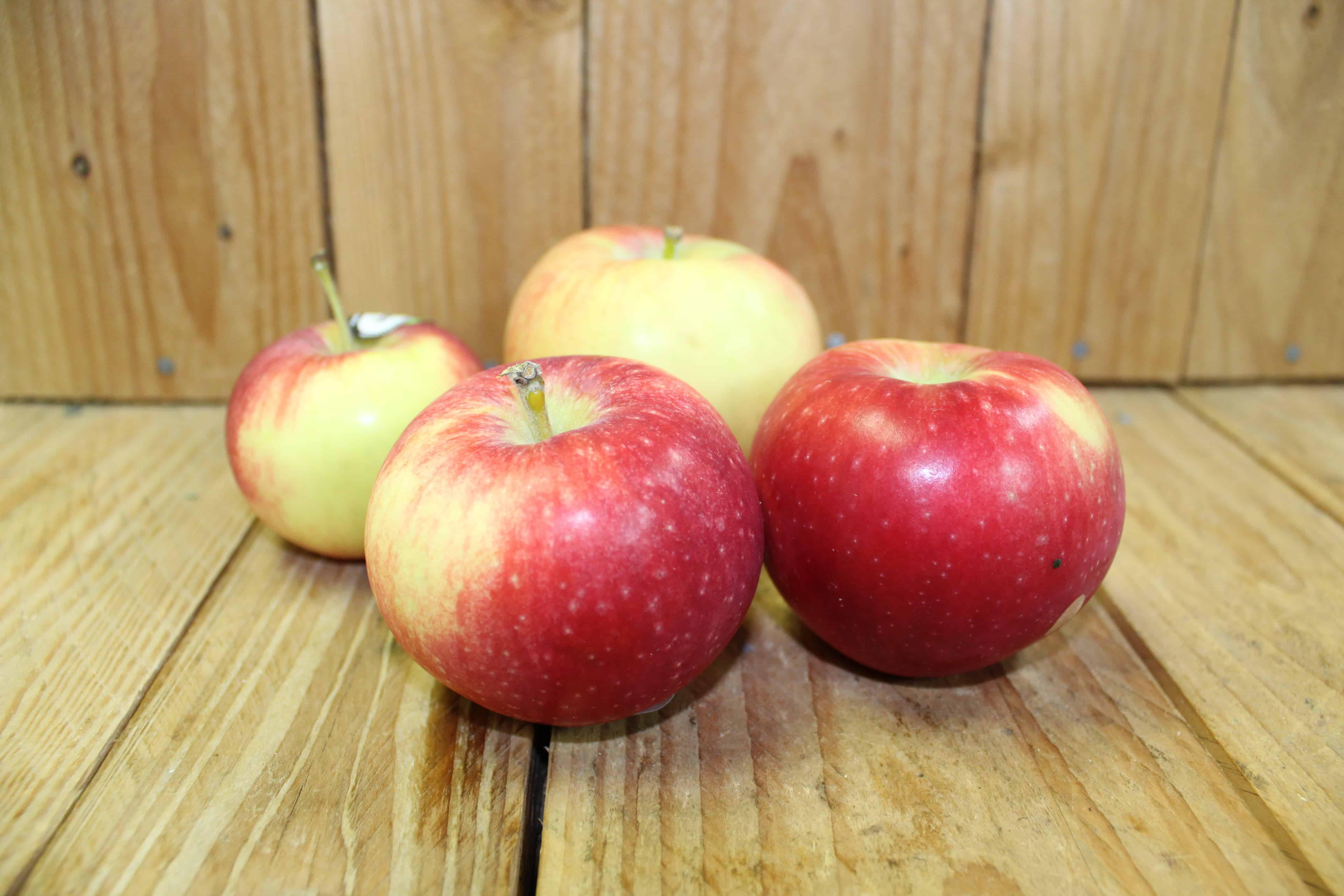 Apples – Lobo QUEBEC Verger Maia (2LB Bag)