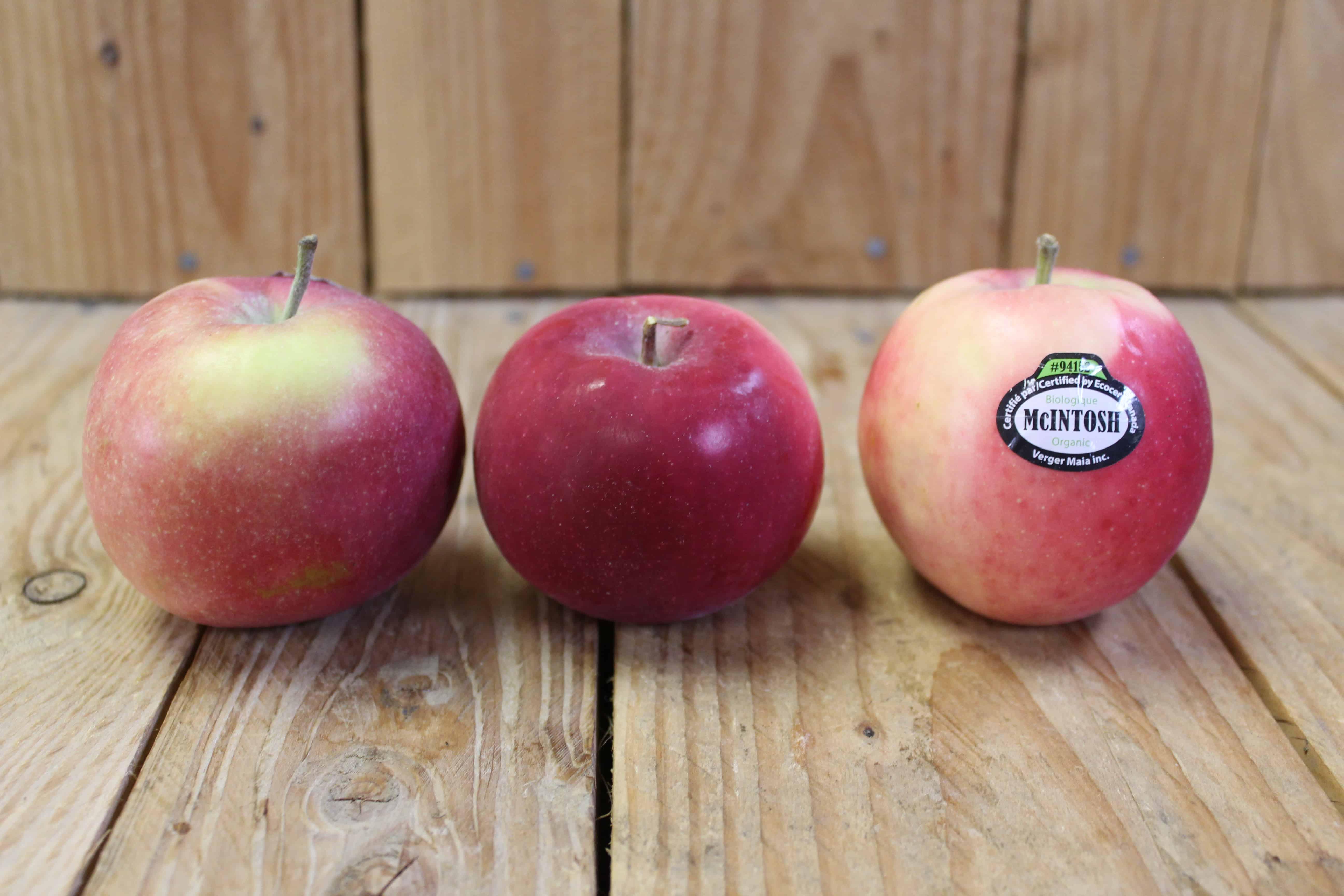 Apples – McIntosh LOCAL Vergers Pomibec (2LB Bag)