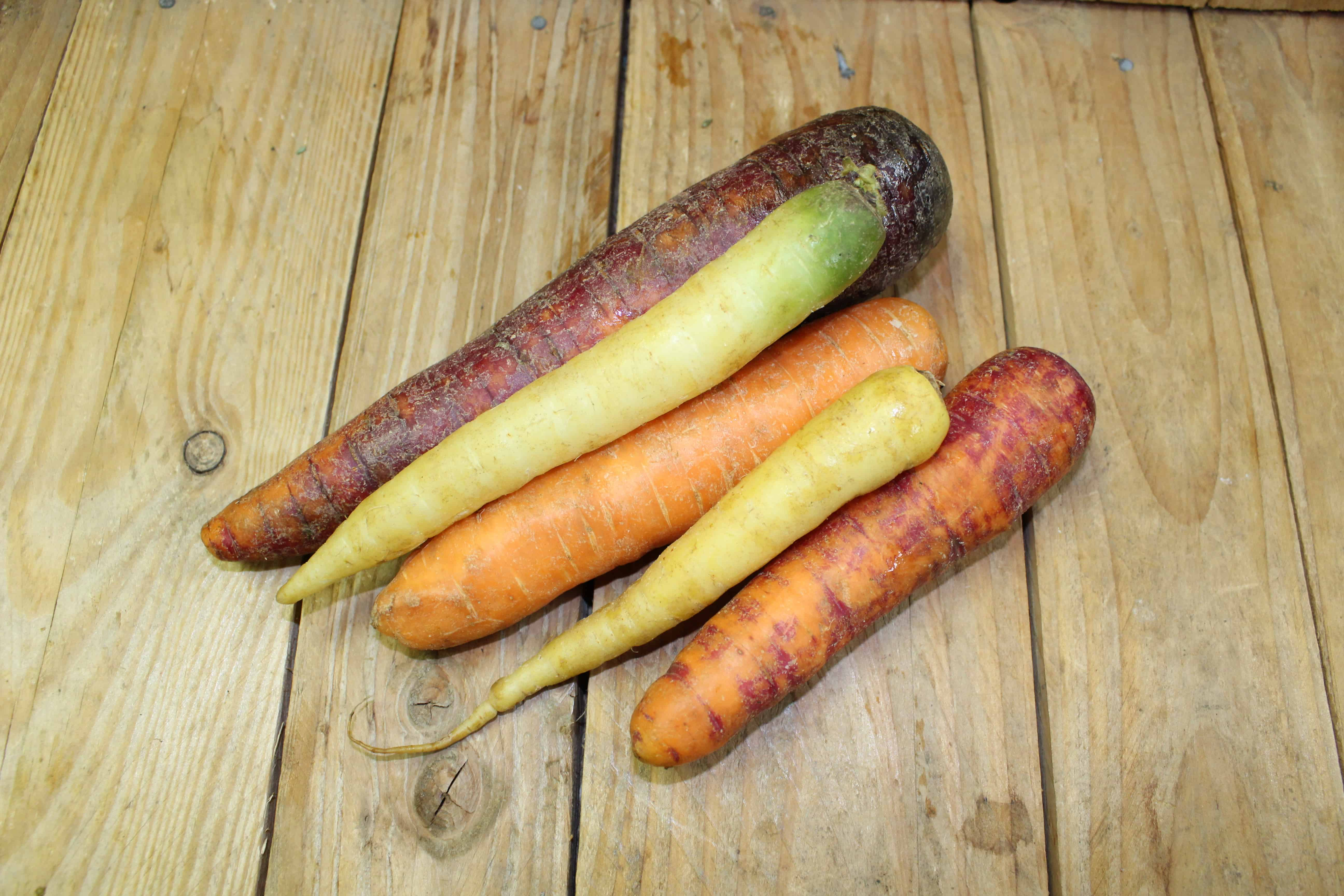 Carrots – Rainbow ONTARIO Pfenning's Farm (2LB Bag)
