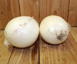 white onion 2