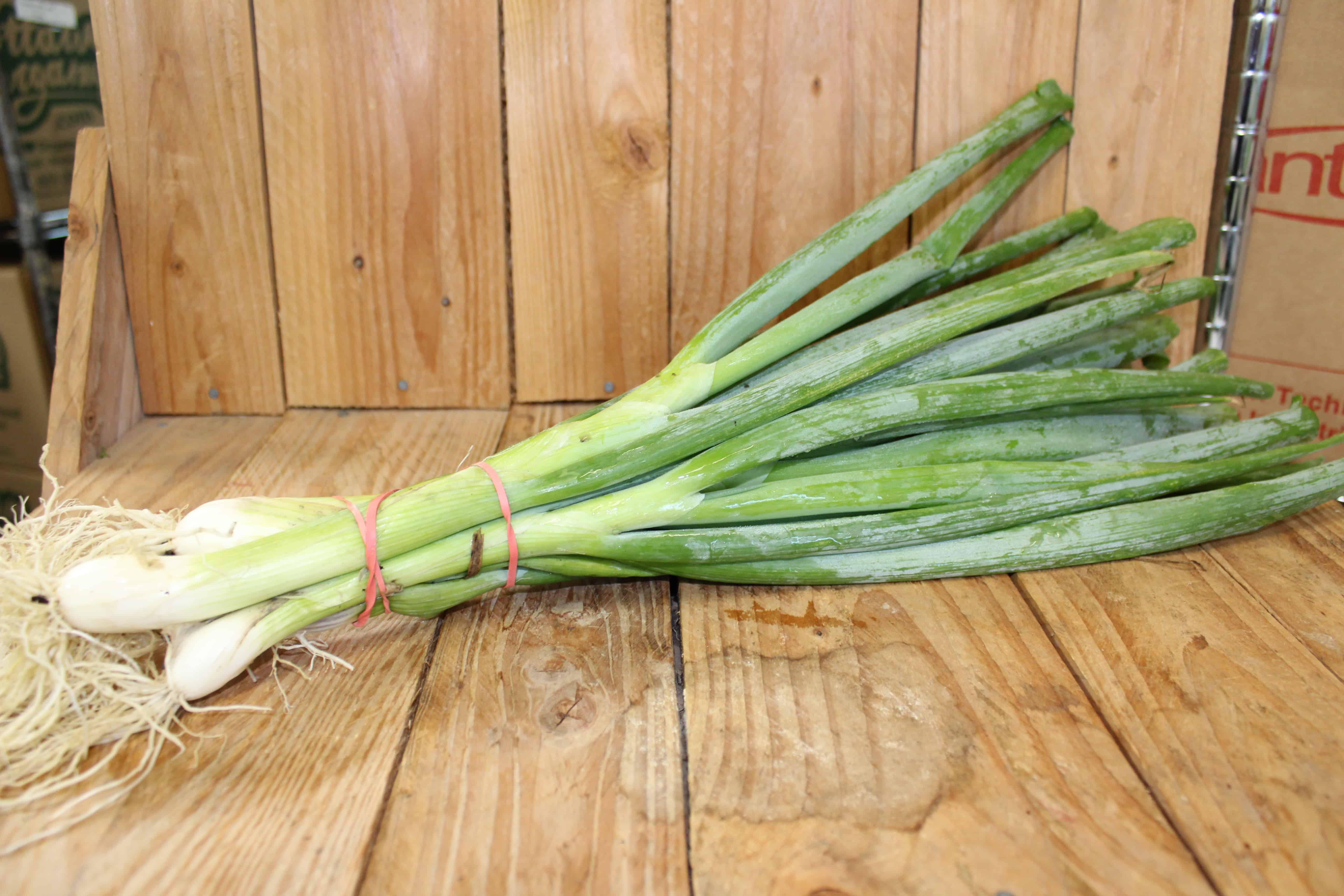 Onions – Green Bunching ONTARIO Pfenning's Farm (Bunch)