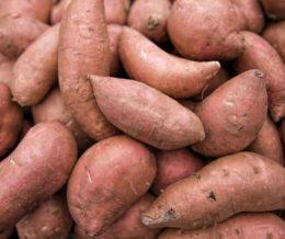 v-sweetpotatoes-orange-2lb